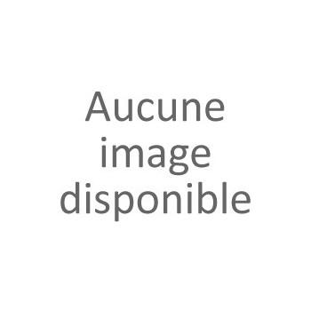 MONORAIL DE GUIDAGE POUR COULISSANT AUTOPORTANT